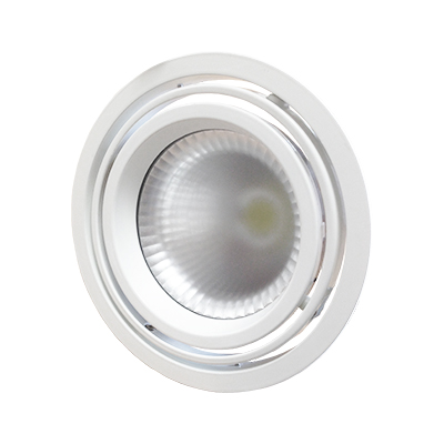 2 Axis Downlight